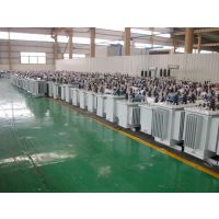 供应S11-100KVA 中兴配电变压器 箱式变电站 干式变压器