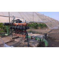 供应猕猴桃滴灌喷灌系统