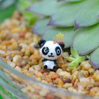 【腮红熊猫】迷你动物模型设计diy素材多肉植物造景盆栽苔藓布景