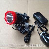 霸诺6651LED强光头灯垂钓徒步户外充电 锂电池头灯 正品