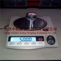 美国华志电子天平HZY-B精准型天平系列 天津厂家