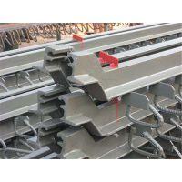 公路桥梁伸缩缝 桥梁伸缩缝装置C406080赠伸缩缝胶条