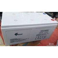 双登蓄电池GFM-300双登蓄电池2v300ah UPS蓄电池