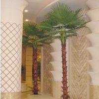 广州仿真棕榈树厂家 酒店老人葵 保鲜棕榈树 蒲葵树 椰子树定做