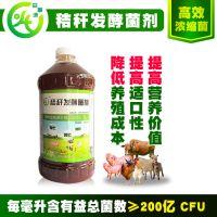益富源秸秆发酵剂怎么购买青黄贮饲料牛羊爱吃