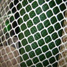 养殖塑料平网 塑料网 养鸡网