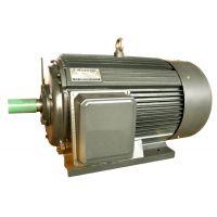 黄河牌Y315S-4 110kW4极电机国标全铜线 汇凯机电(黄河旋风产品直销)