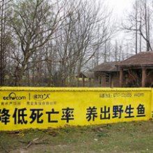 武汉周边农村墙面广告效果,荆州广告喷绘制作价格,孝感广告喷绘设计制作