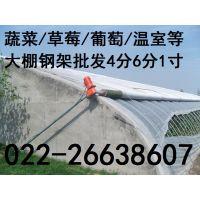 北京木耳大棚骨架加工 折弯 定尺 北京厂家供应热镀锌钢管木耳大棚骨架