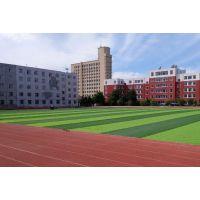 天津人造草坪足球场地施工_标准七人制足球场建设方案