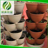 圆形边立体组合阳台种菜种植盆 三色花形种植盆立体绿化组合容器