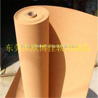 深圳5mm幼儿园软木护墙板供应 健康环保 防碰撞