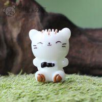 白色小猫咪 家畜园艺苔藓微景观造景创意DIY素材配件装饰可爱卡通