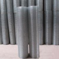 厂价直销供应河南电焊网 批发电焊网片 铁丝电焊网片