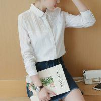 新款韩范秋装白衬衫女长袖打底衫休闲塑身上衣修身棉衬衣潮Q12Q02