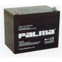 南昌八马蓄电池PM12V100AH铅酸蓄电池正品