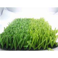 足球场人造草坪厂家,塑料人造草坪厂家直销 杭州人工草皮价格优惠