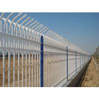 中山公园护栏网价格机场方管护栏网隔离网锌钢护栏小区隔离网防护网