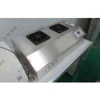 江苏大峰净化 3-10克挂壁式臭发生器 臭氧机 杀菌 空气净化器 生产厂家