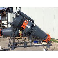 污泥绞吸机荷兰贝尔BELL250污泥绞吸泵
