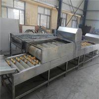 诸城华宝机械(图)、土豆干洗机多少钱、土豆干洗机