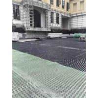 山东屋顶花园排水板,汉高建材(在线咨询)