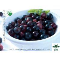 润木供应巴西莓粉/阿萨伊莓粉