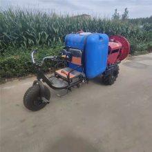 农用农药喷雾器 富兴手推小车式喷雾机 汽油喷雾器