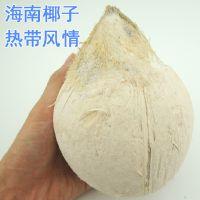 批发供应海南新鲜水果 青椰子 三亚特产椰白 抛光椰白 椰子椰王