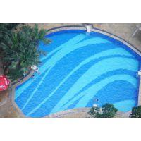 金华泳池水处理设备公司 设计和建设hy高端水处理工程
