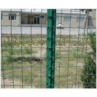 供应优质绿色铁丝网围栏,养殖铁丝网围栏,养鸡围栏网