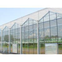 大型阳光房钢化玻璃中空玻璃温室大棚—瀚洋生态温室工程