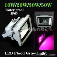 厂家现货供应 LED 10W 集成投光灯 LED泛光灯 大功率投光灯