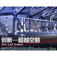 SAP HANA 云端SAP Business One上海达策