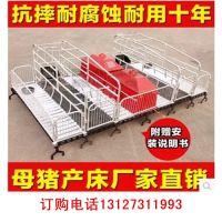 猪用双体产床厂家批发 零售