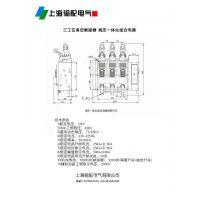 CKFZ-12D/630-20型户内高压真空负荷开关-上海输配电气