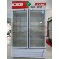 双门饮料展示柜_冰柜展示柜_山东胜泉电器有限公司