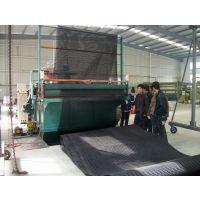 6mm三维复合排水网 润泽覆土工布排水网厂家