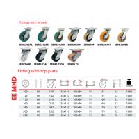 AGV辅助轮万向轮定向轮工业脚轮欧洲tellurerota脚轮支架