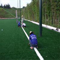人造草坪工程材料厂家 人造草坪足球场施工方案设计 人工草皮每平米价格