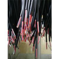 成佳电缆(在线咨询)、SGS认证、中山SGS认证