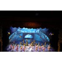 北京马戏团演出公司寻求合作杂技表演欢迎合作