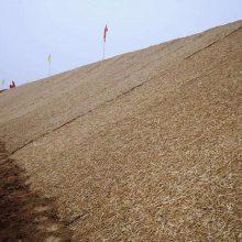 麻椰固土毯厂家