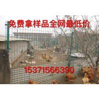 江苏泰州扬州江阴圈鸡围网,养鸡场围网,鸡鸭圈养铁丝网,