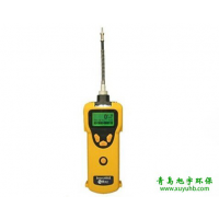 美国华瑞PGM1600 SearchRAE 泵吸式可燃气毒气复合气体检测仪青岛气体检测仪