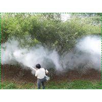弥雾机 喷的高竹林用弥雾机 湖南柑橘树打药烟雾机