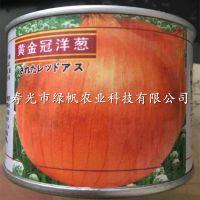供应洋葱种子 黄皮洋葱 【黄金冠洋葱】 抗性好 产量高