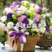 上海浦东/虹桥机场鲜花进口报关