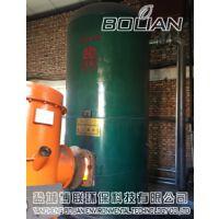 盐城射阳博联生物质燃烧机-立式燃煤锅炉改烧生物质