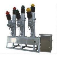 *LW8-40.5*LW8-40.5*电站专用断路器